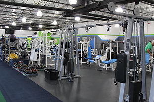 FREE WEIGHTS AND MACHINES