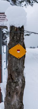 Wanderweg Snow.jpg