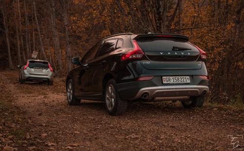 Volvos Forest.jpg