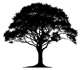 Tree.png