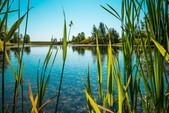 Ranchers' Rise Wetland