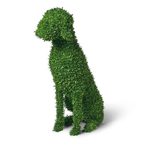 Faux Boxwood Dog