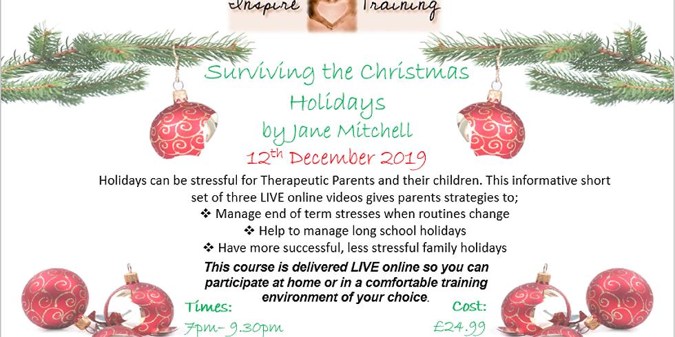 Surviving the Christmas Holidays