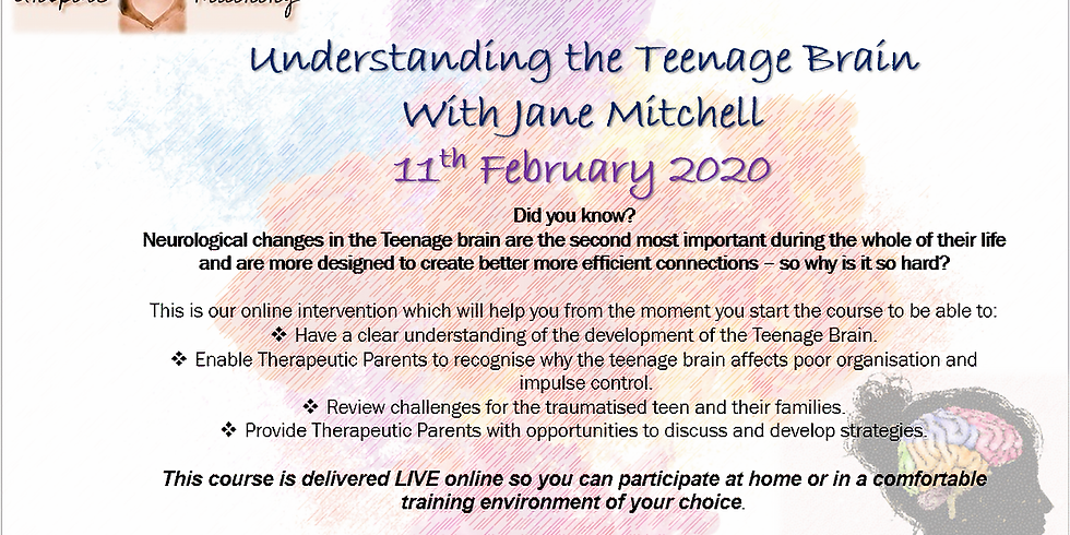 Understanding the Teenage Brain By Jane Mitchell Webinar