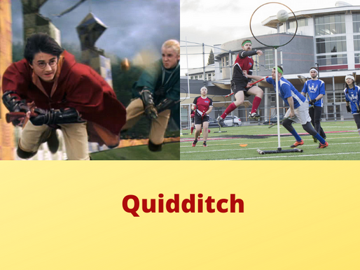 Quidditch for Real