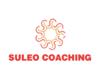 suleo logo_edited.png