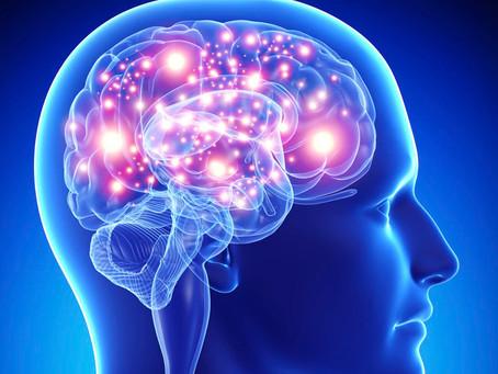 10 sites gratuitos para exercitar seu cérebro