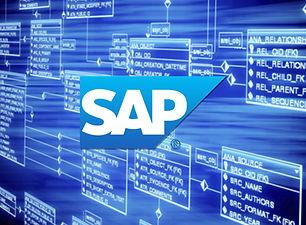 SAP ABAP para Funcionais