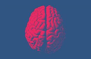 Inglês com Neurociência