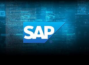 SAP MM Materials Management + Loc. Brasi