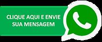 Enviar mensagem para WhatsApp do Profissional Industrial