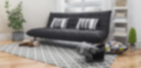 Black Couch, Couch, Pillow, Plants, Shelf, Carpet, Blanket, Upholstery, Furniture, Social Media