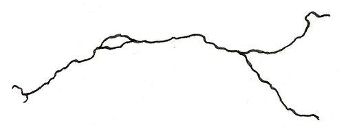 fleuve illustration 4 .jpg