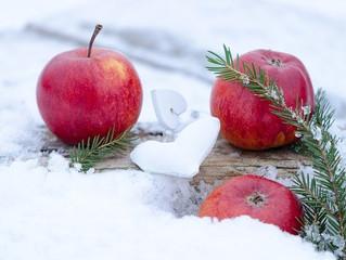 りんごのサワーエール