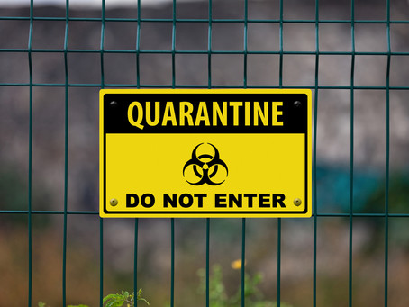 Don't quarantine your brand