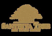 logo-santhiya.png