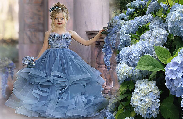1. Blue Hydrengia Dress .jpg