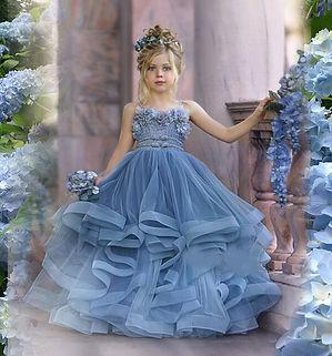 Blue Hydrangea  .jpg
