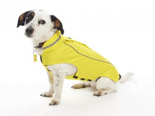 Raincoat hond
