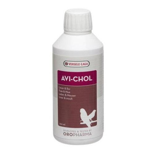 Avi -Chol