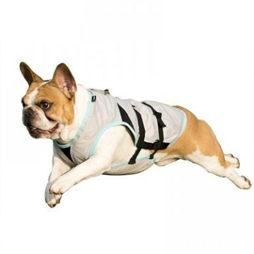 Dry Cooling Vest
