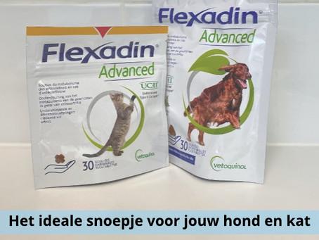 -Flexadin, het ideale snoepjes voor jouw viervoeter -