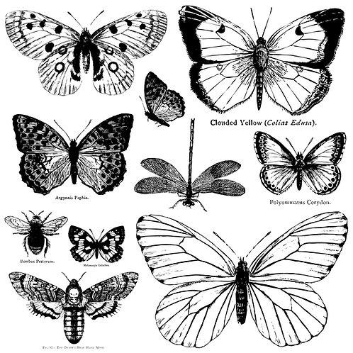 Butterflies Decor Stamp Set