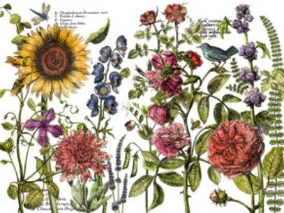 Botanist Journal Decor Transfer Pad