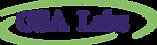 GSA Labs logo (2).png