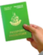 passport-in-hand-285x363.png