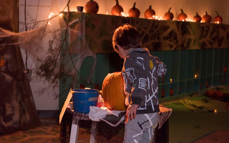 Pumpkin Exlporations