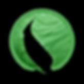 Logo Soluvap
