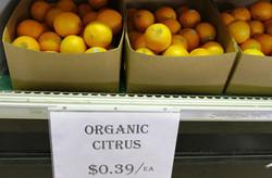 Organic Citrus