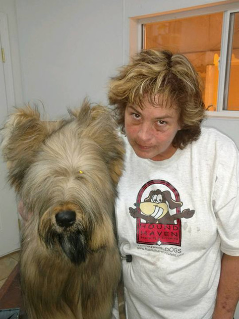 Dog lover memory 8