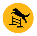 Agility Class ICON.png