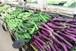 Eggplant & More!