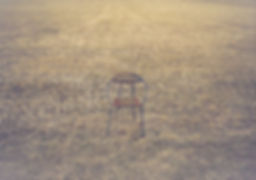 Chair in field with 2 edits_1.jpg