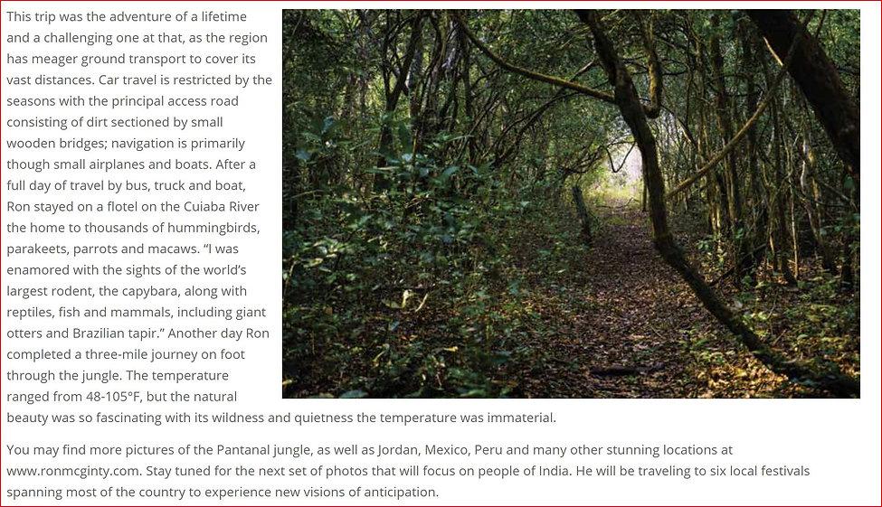 Pantanal Jungles, Brazil- 2.JPG