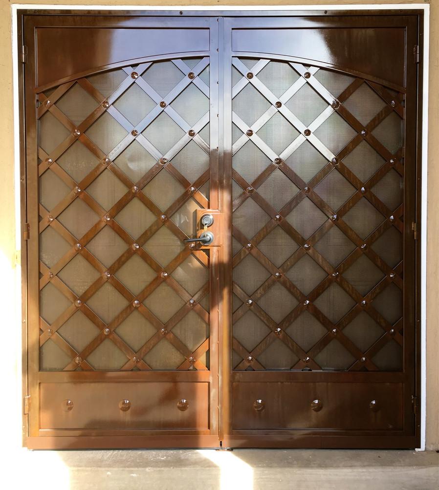 Deluxe Security Door 2
