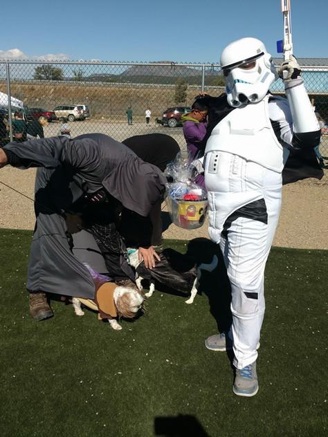 Dog lover memory 13