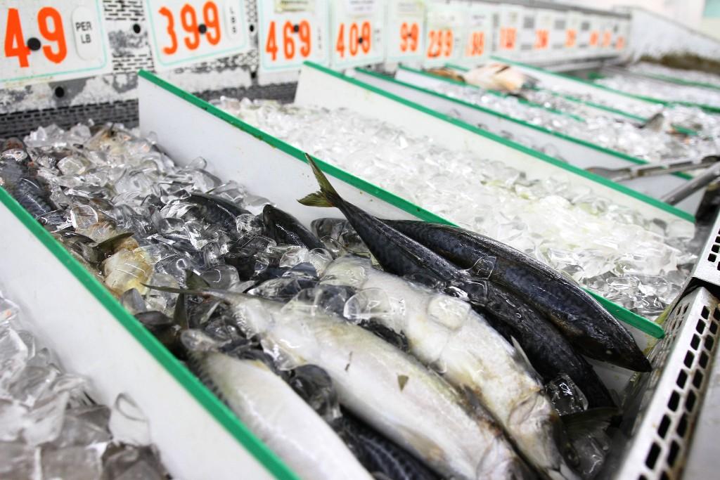 Seafood Row 3