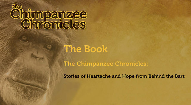 Chimpanzee Chronicles.jpg