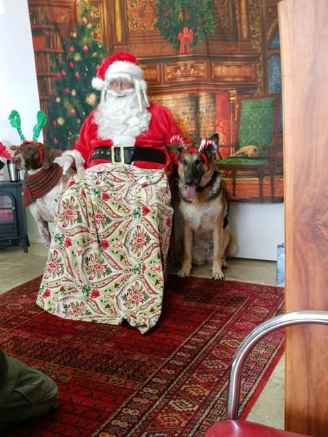 Santa at Hound Haven 17.jpg