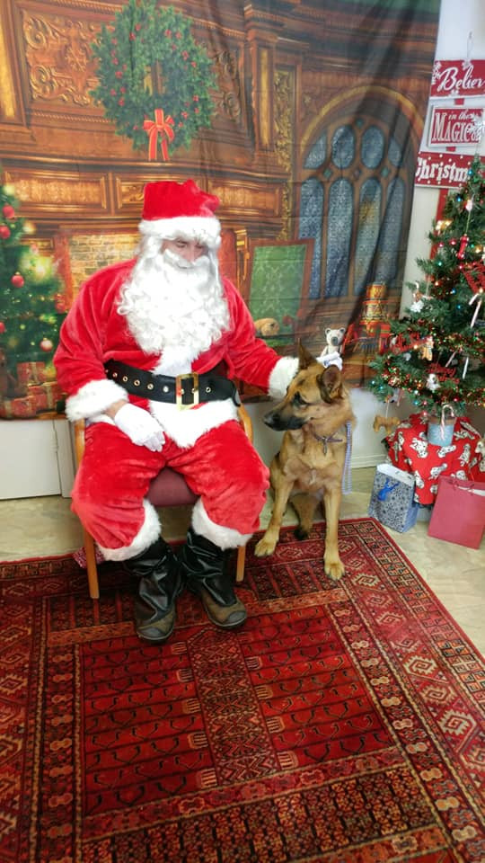 Santa at Hound Haven