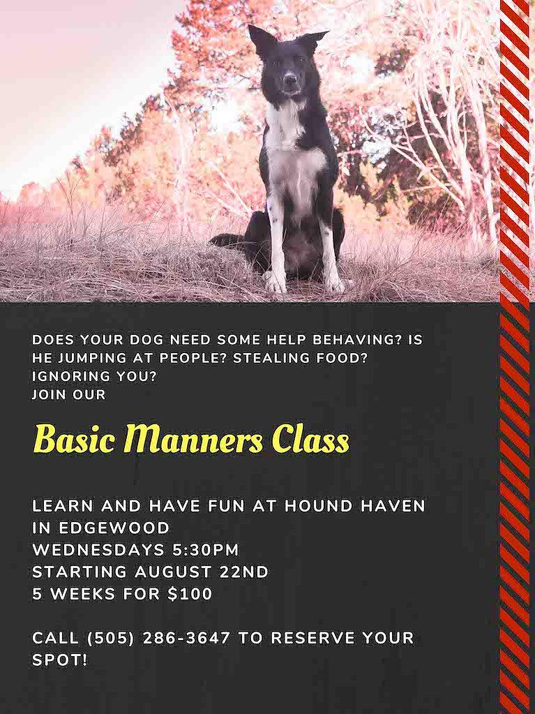 Basic-Manners-Class Web.jpg