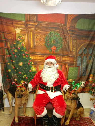 Santa with Lead Dogs