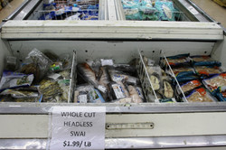 New Variety of Frozen Fish