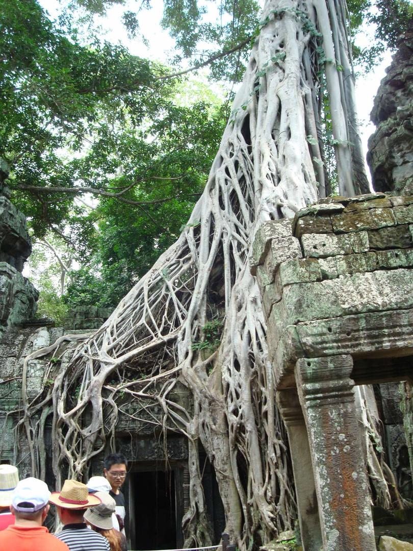 Cambodia 2017 083