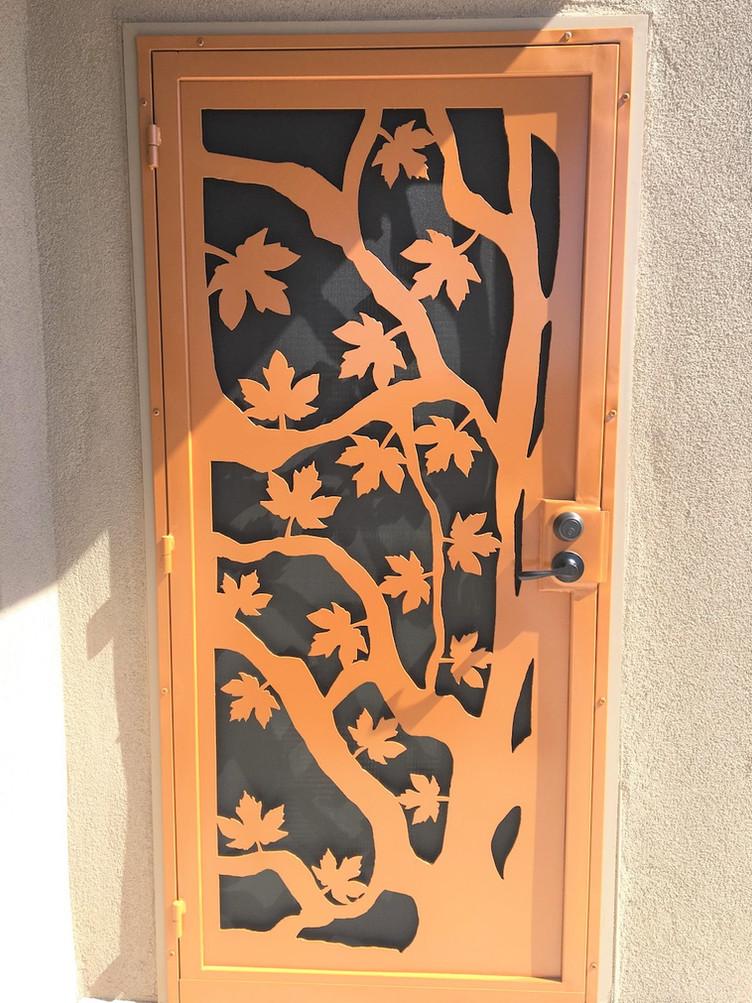 Deluxe Security Door 9