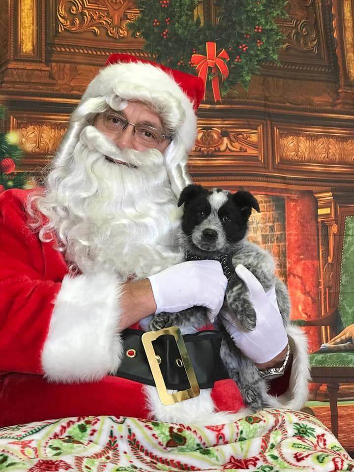 """Santa saying """"Smile!"""""""